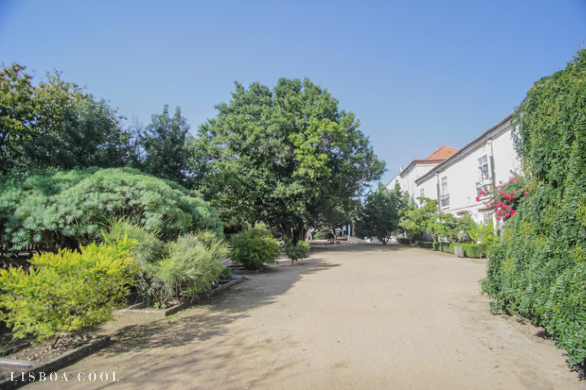 LisboaCool_Visit_Ajuda Botanical Garden