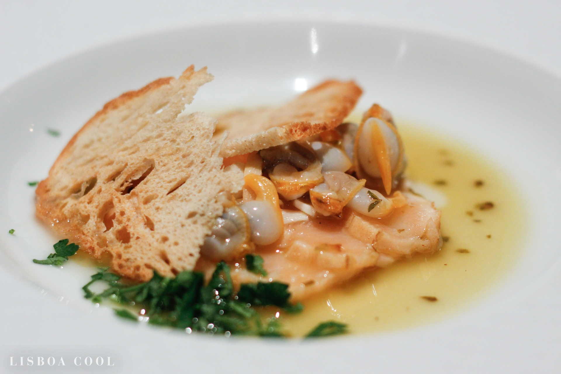 lisboa_cool_comer_restaurantes_tasca_da_esquina
