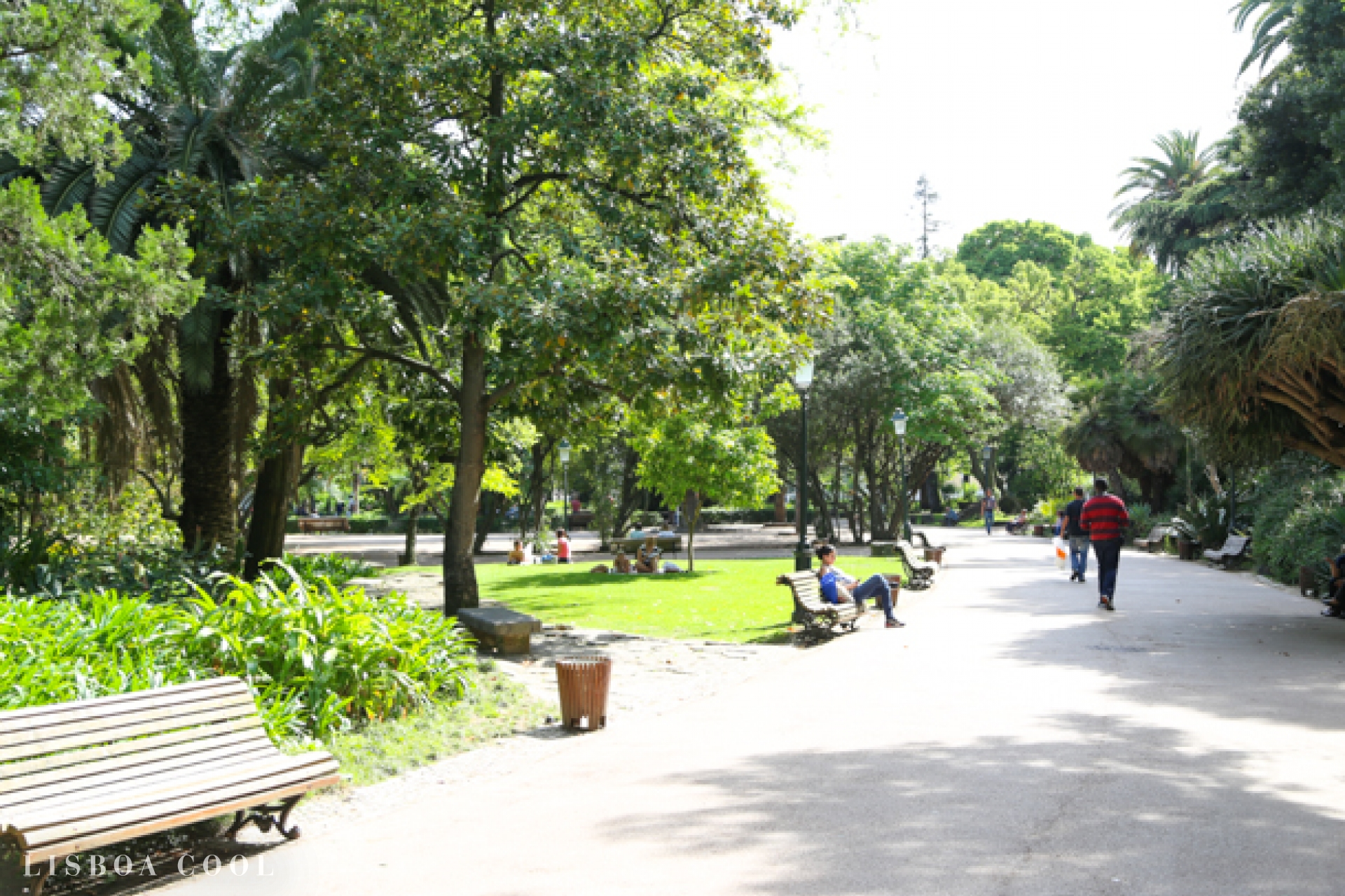 Artesanato Em Couro ~ Jardim da Estrela Lisboa Cool