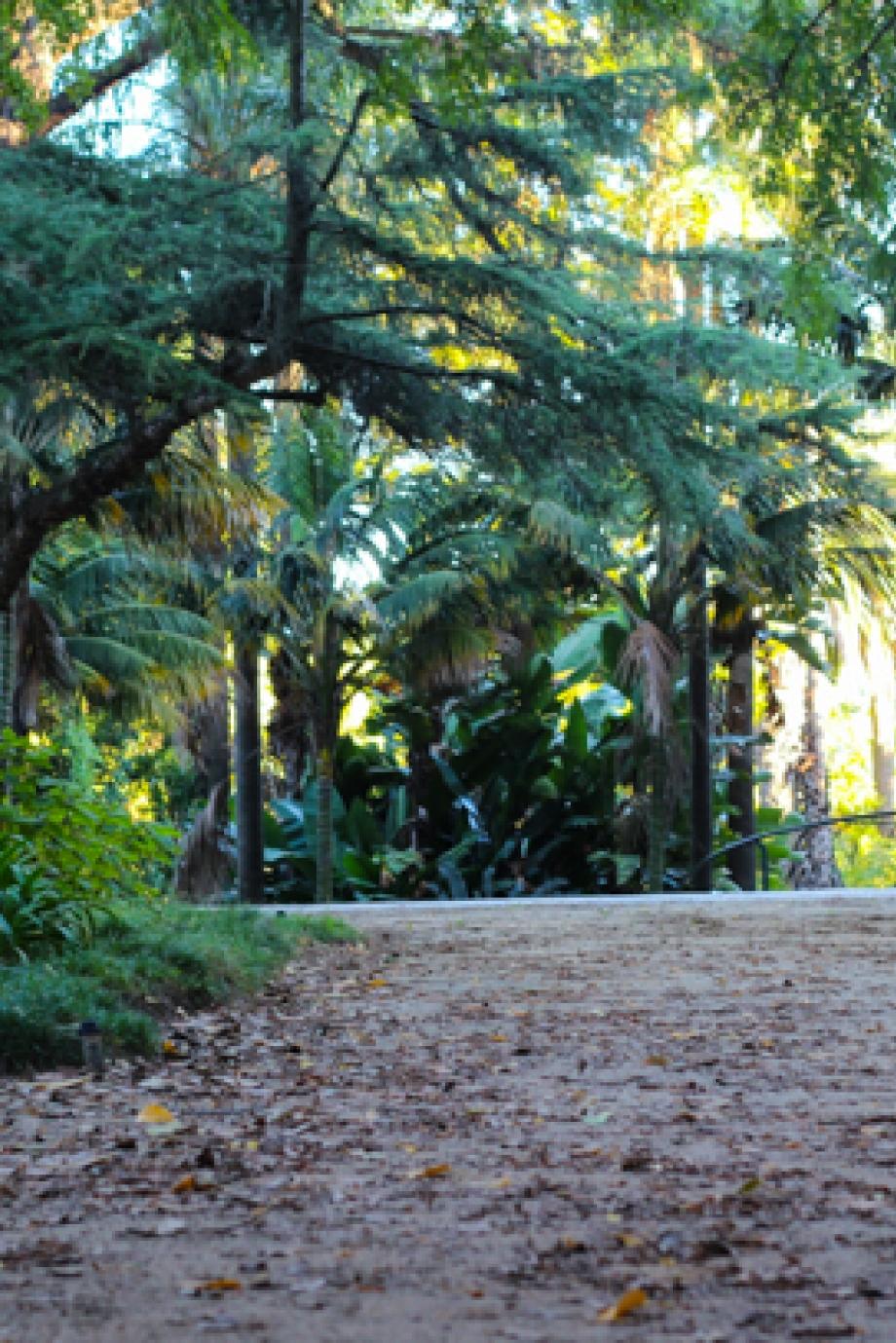 LisboaCool_Visit_Botanical Garden