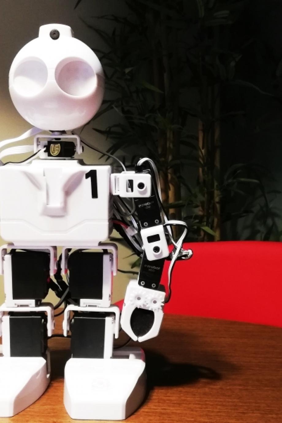 Teckies caça aos robôs